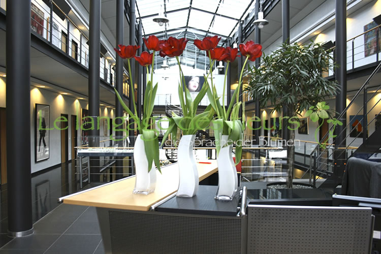 Reception decoration, Triple, French. Tulips red