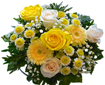 Yellow flowers, send flowers